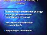 basic processes functions of memory
