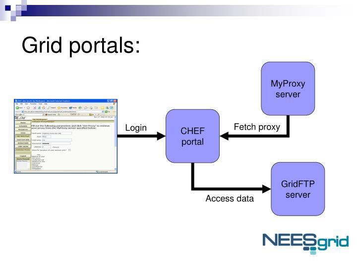 Grid portals: