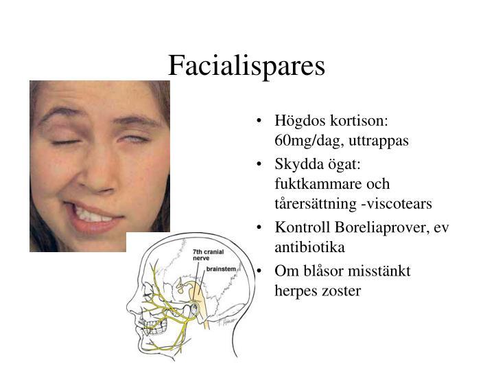 nasonex nasal steroid