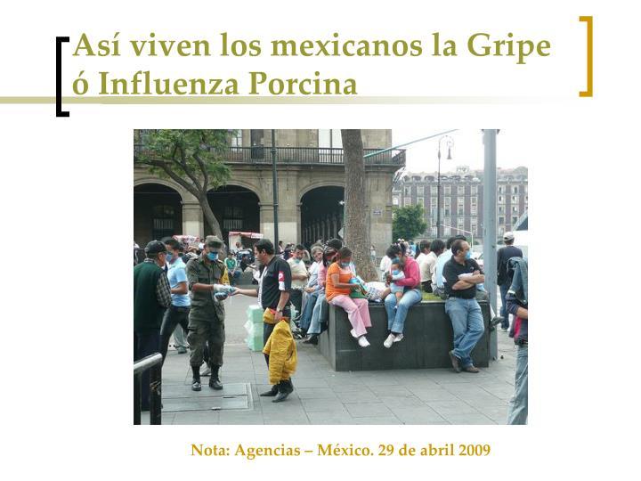 Así viven los mexicanos la Gripe ó Influenza Porcina