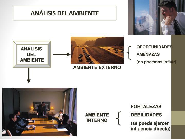 ANÁLISIS DEL AMBIENTE