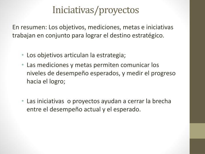 Iniciativas/proyectos