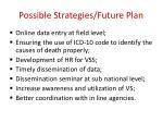 possible strategies future plan