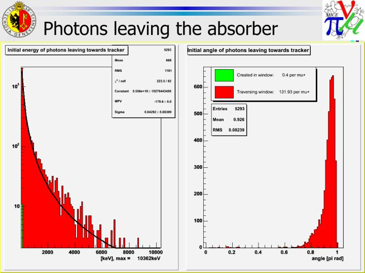 Photons leaving the absorber