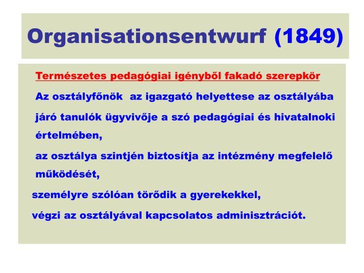 Organisationsentwurf