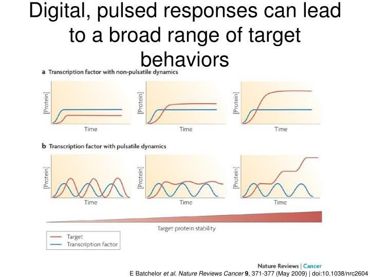 Digital, pulsed responses can lead to a broad range of target behaviors