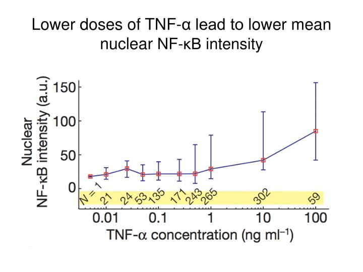 Lower doses of TNF-α lead to