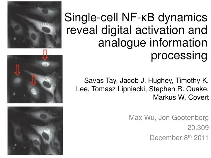 Single cell nf b dynamics reveal digital activation and analogue information processing