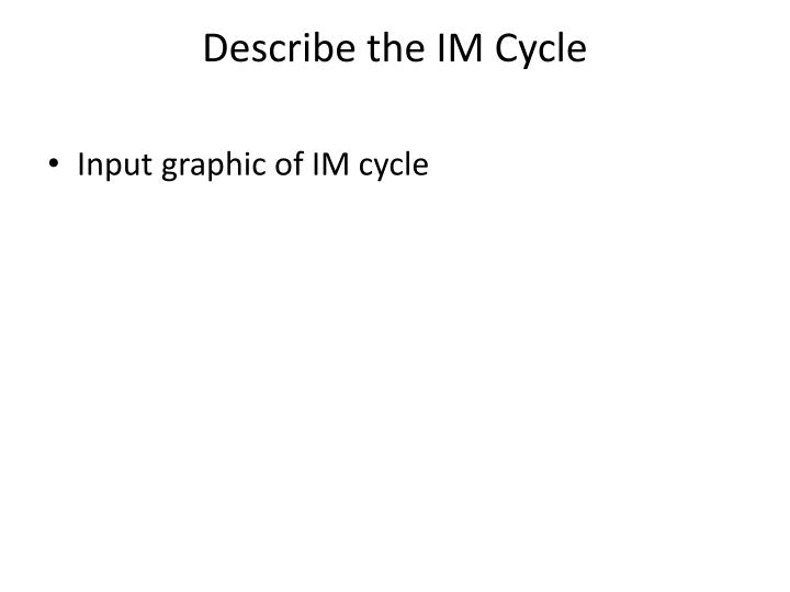 Describe the IM Cycle