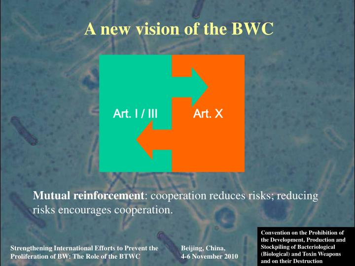 A new vision of the BWC