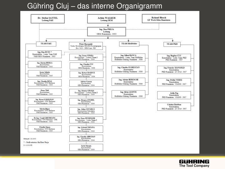 Gühring Cluj – das interne Organigramm