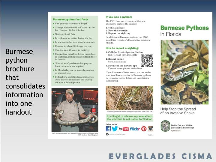 Burmese python brochure that consolidates