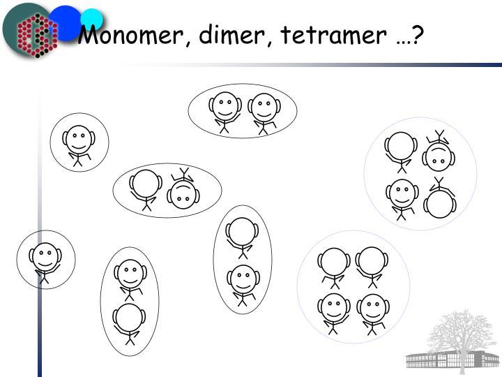 Monomer, dimer, tetramer …?