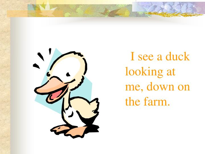 I see a duck looking at me, down on the farm.