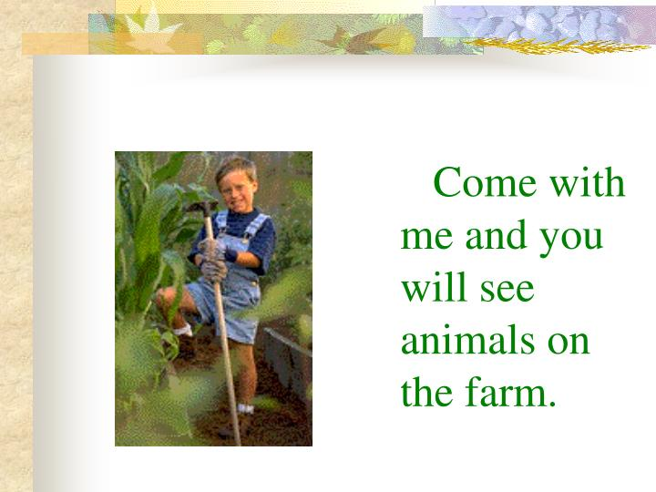 Come with me and you will see animals on the farm.