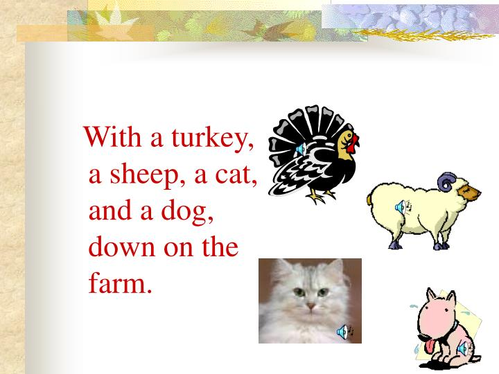 With a turkey, a sheep, a cat, and a dog, down on the farm.