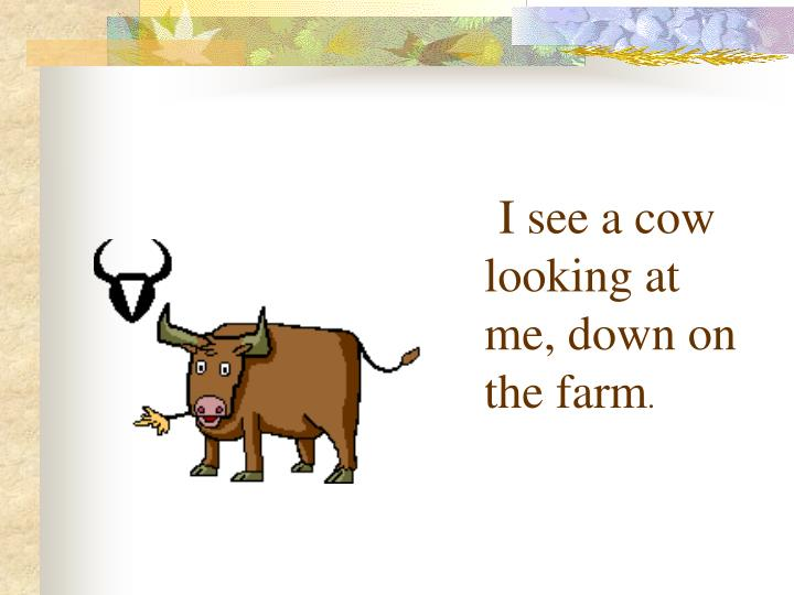 I see a cow looking at me, down on the farm