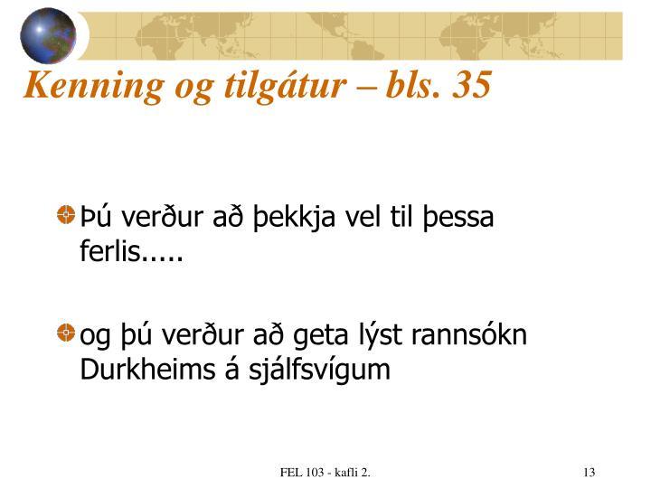 Kenning og tilgátur – bls. 35