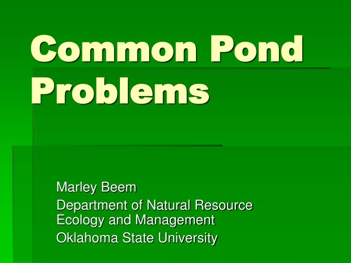 common pond problems