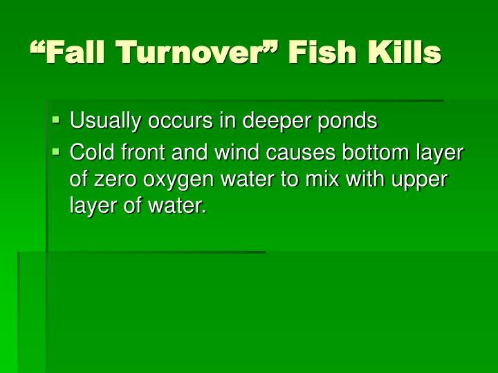 """""""Fall Turnover"""" Fish Kills"""