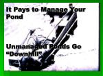 it pays to manage your pond unmanaged ponds go downhill