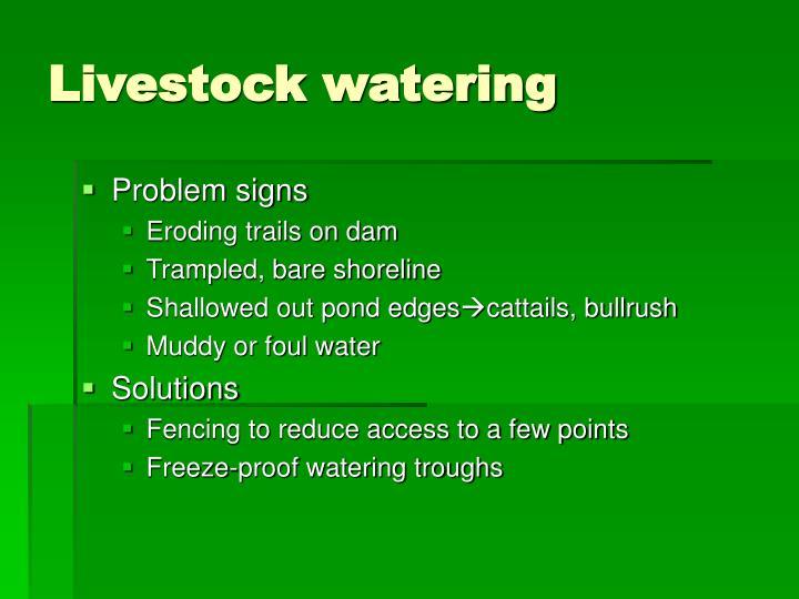 Livestock watering