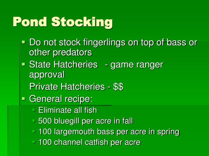 Pond Stocking