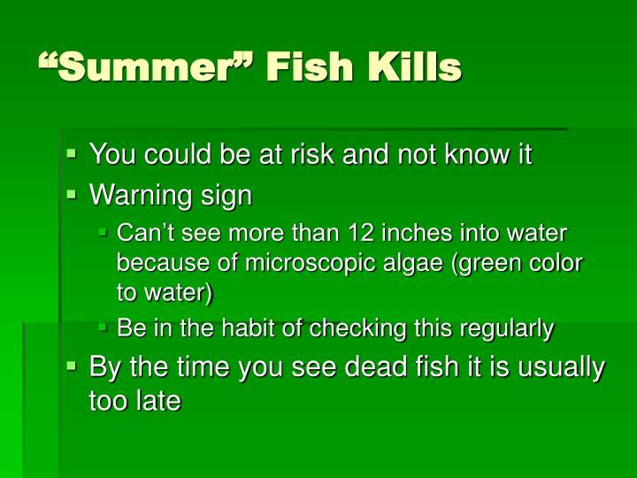 """""""Summer"""" Fish Kills"""