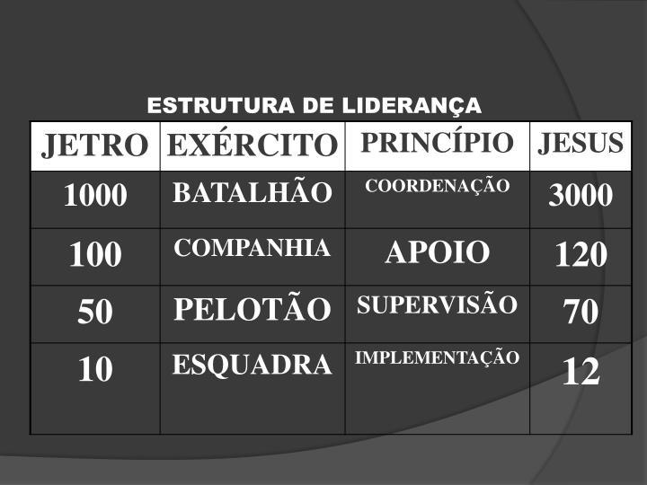ESTRUTURA DE LIDERANÇA