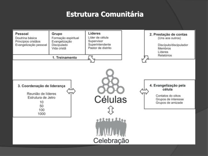 Estrutura Comunitária