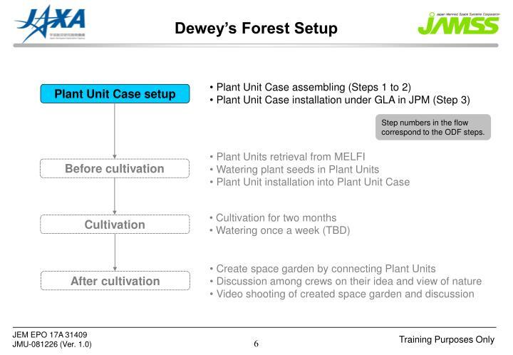 Dewey's Forest Setup