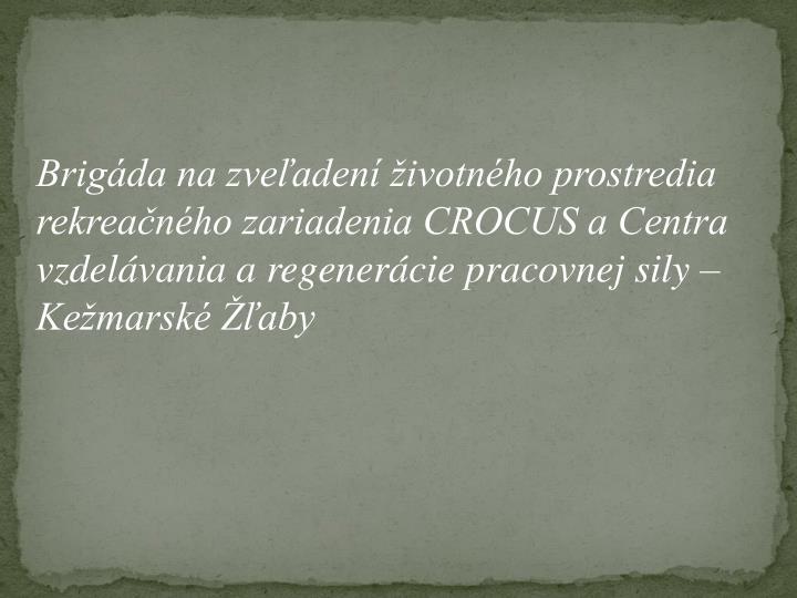 Brigáda na zveľadení životného prostredia rekreačného zariadenia CROCUS a Centra vzdelávania a regenerácie pracovnej sily – Kežmarské Žľaby