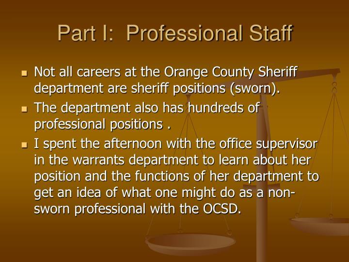 Part I:  Professional Staff