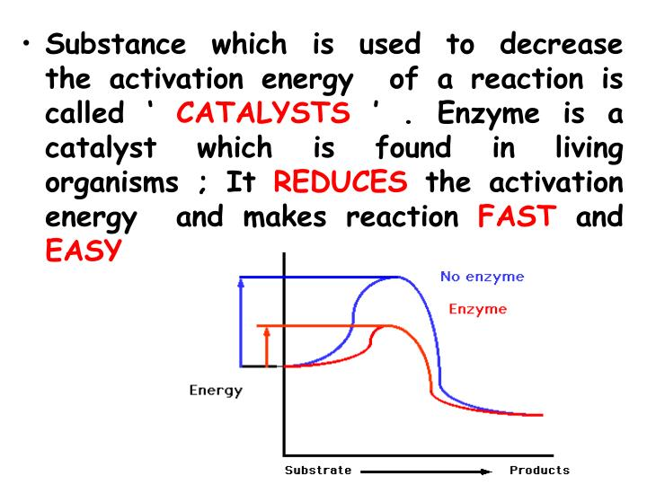 Substance which is used to decrease  the activation energy  of a reaction is called '