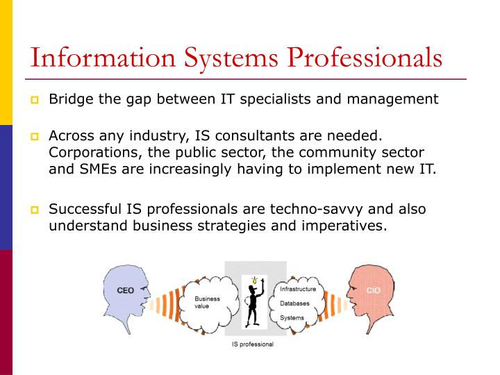 Information systems professionals