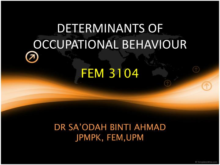Determinants of occupational behaviour