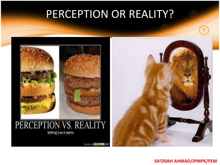 PERCEPTION OR REALITY?