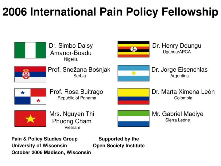 2006 International Pain Policy Fellowship