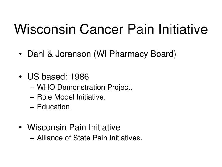 Wisconsin cancer pain initiative
