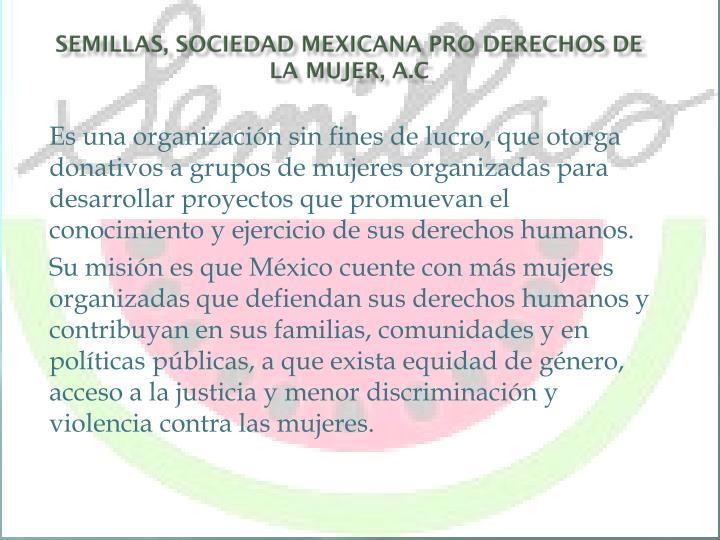 Semillas, Sociedad Mexicana Pro Derechos de la Mujer, A.C