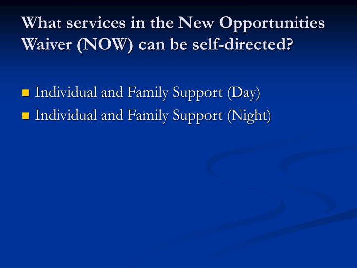 What services in the New Opportunities Waiver (NOW) can be self-directed?