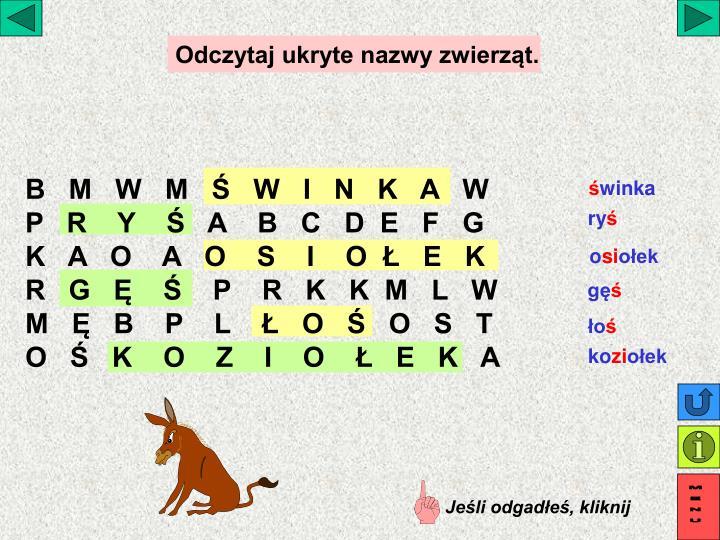 Odczytaj ukryte nazwy zwierząt.