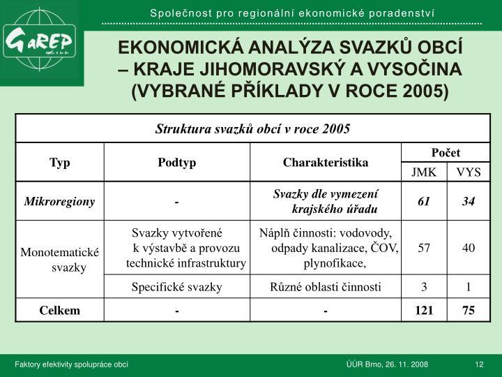 Ekonomická analýza svazků obcí