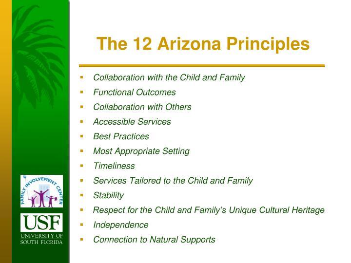 The 12 Arizona Principles