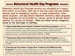 service behavioral health day programs domains