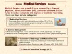 service medical services domains