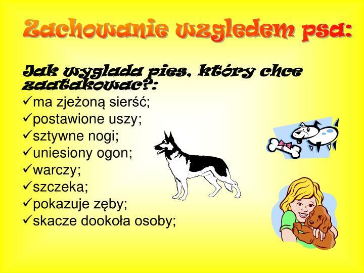 Zachowanie wzgledem psa: