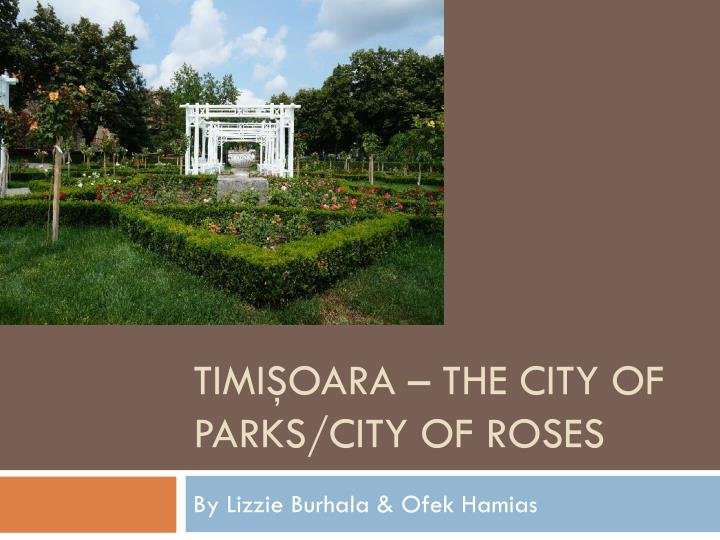 Timi oara the city of parks city of roses