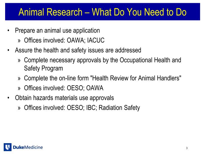 Animal research what do you need to do