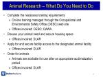 animal research what do you need to do1